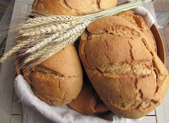 pane integrale di grano antico, artigianale, con lievito madre