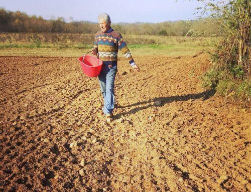 Restituire il seme all'agricoltore