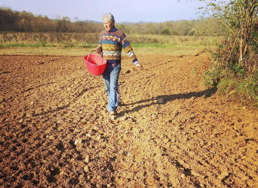 Agricoltore semina