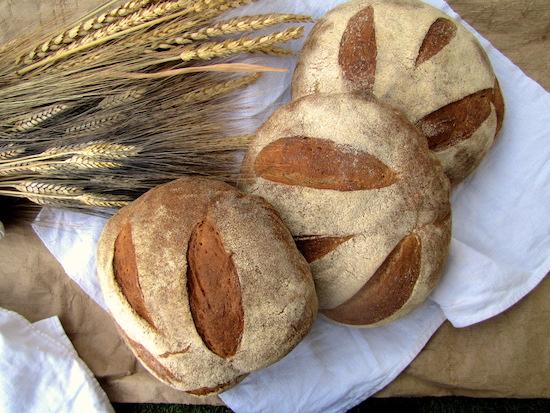 Pane lievito madre e farina-grani-antichi